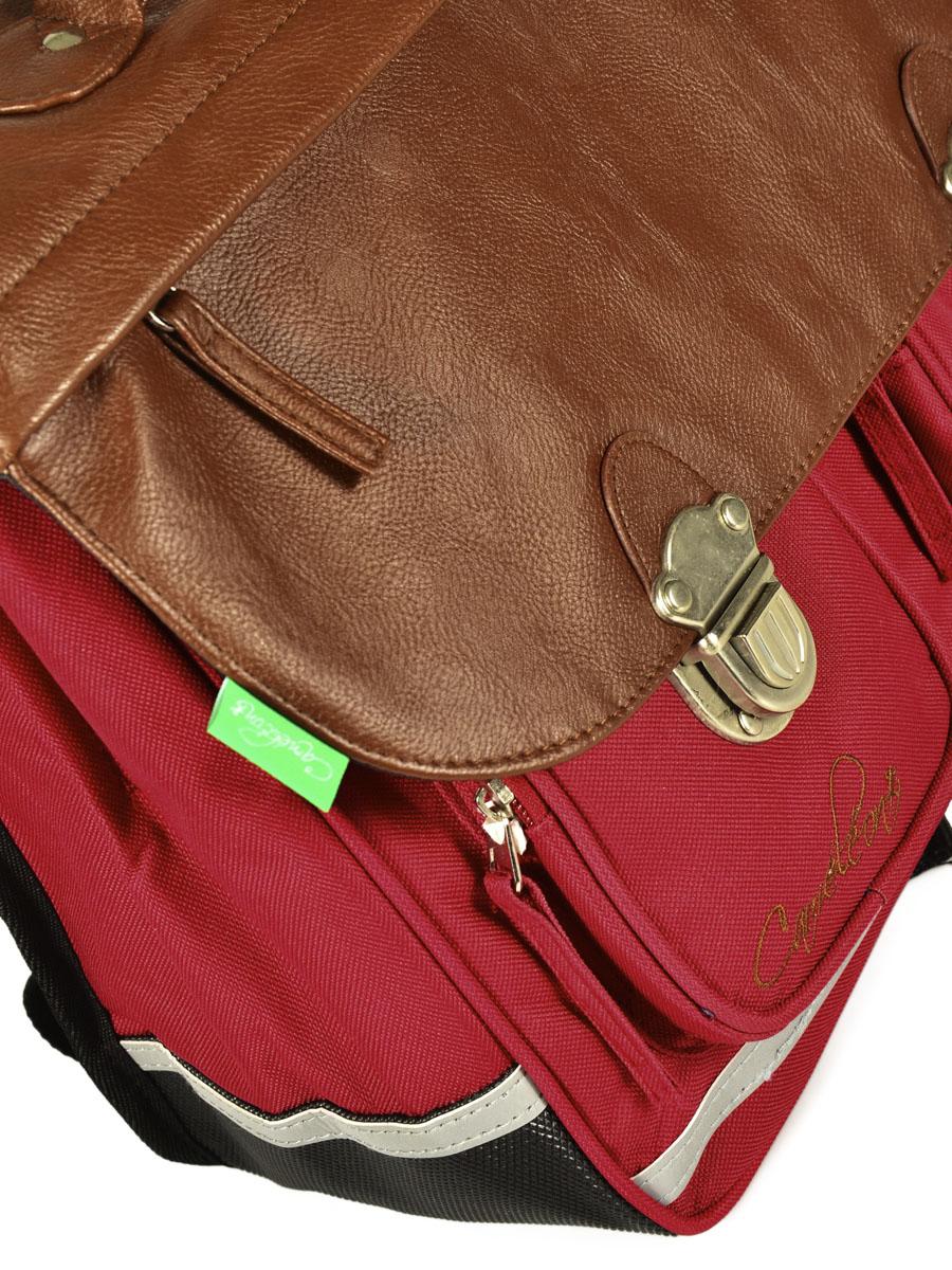 Школьный портфель Cameleon арт. CA35 13 литр, - фото 3