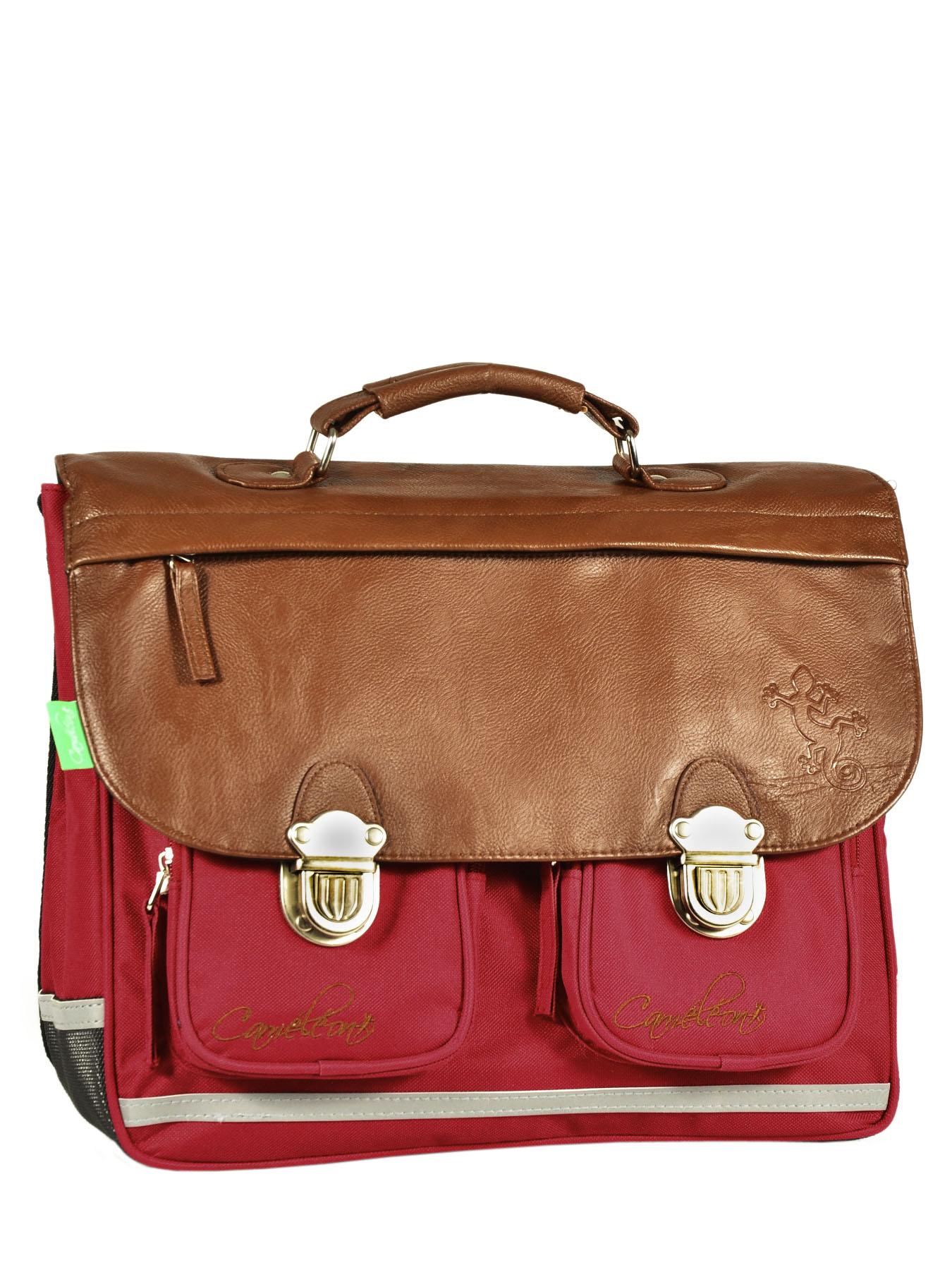 Школьный портфель Cameleon арт. CA35 13 литр, - фото 2
